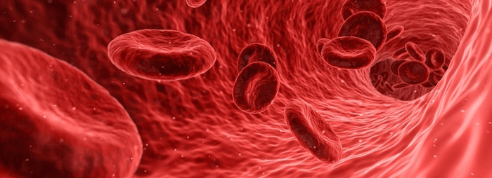 bloedvat