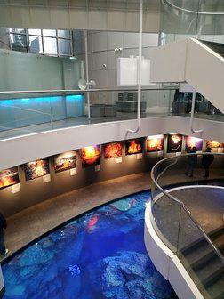 Perlan museum in IJsland